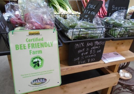Bee Friendly Farming Attracts Customers