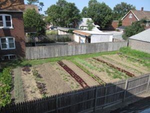 sf-photo-ppt-bay-branch-backyard-plot-startup-1