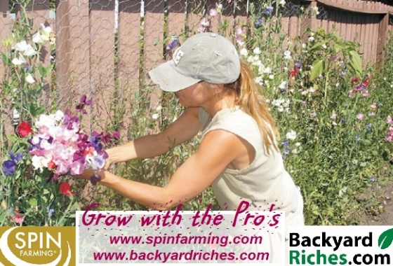 Wanna be a flower farmer?