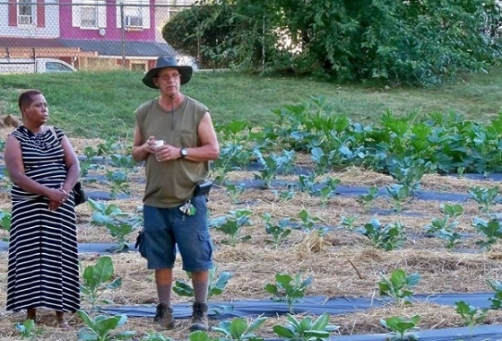 A New Role Model for Urban Farms